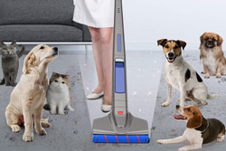 comprar aspirador escoba sin cable para mascotas #mascotas #aspiradorescoba